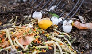 Food waste has become a national concern.
